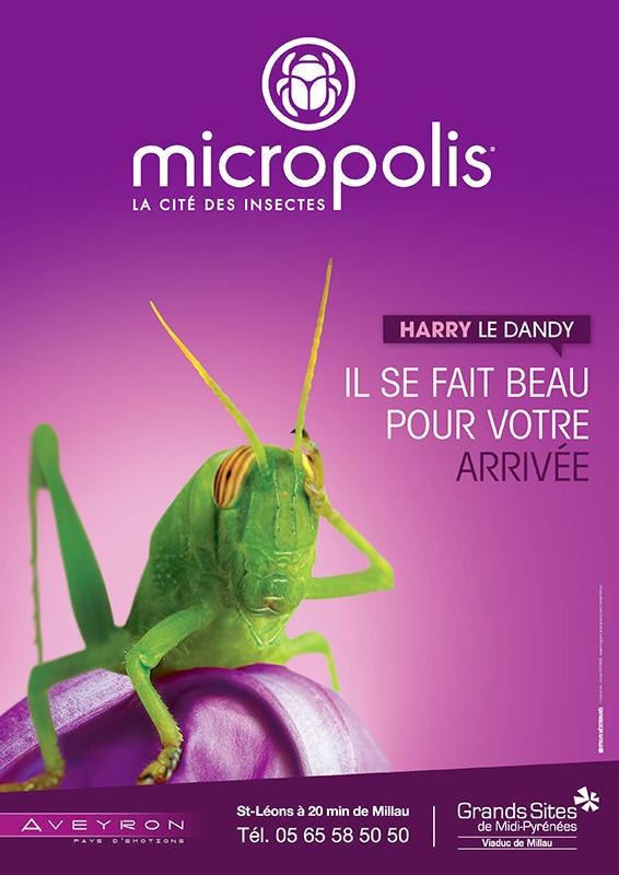 © Micropolis- Christian Bousquet